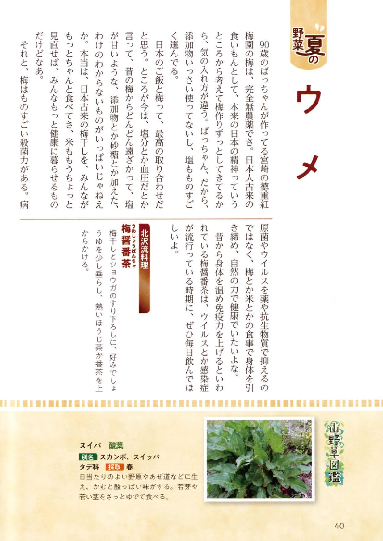 四季を彩るデトックス料理本文1